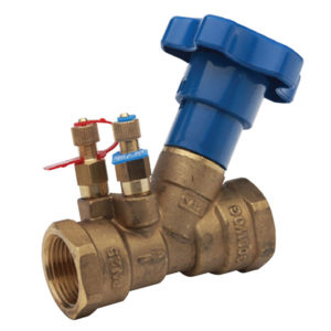 BSP DZR Brass Double Regulating Valve with Test Points