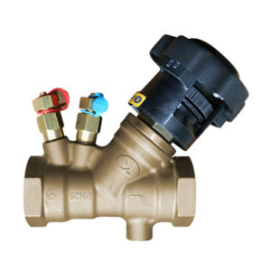 DZR BSP Brass Double Regulating Valves with Test Points