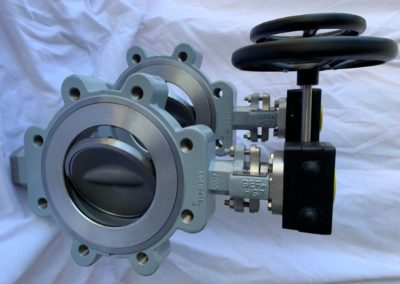 Lugged High Performance Butterfly Valves