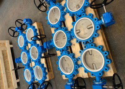 Gearbox Operated Lugged and Tapped PTFE Seated Butterfly Valves